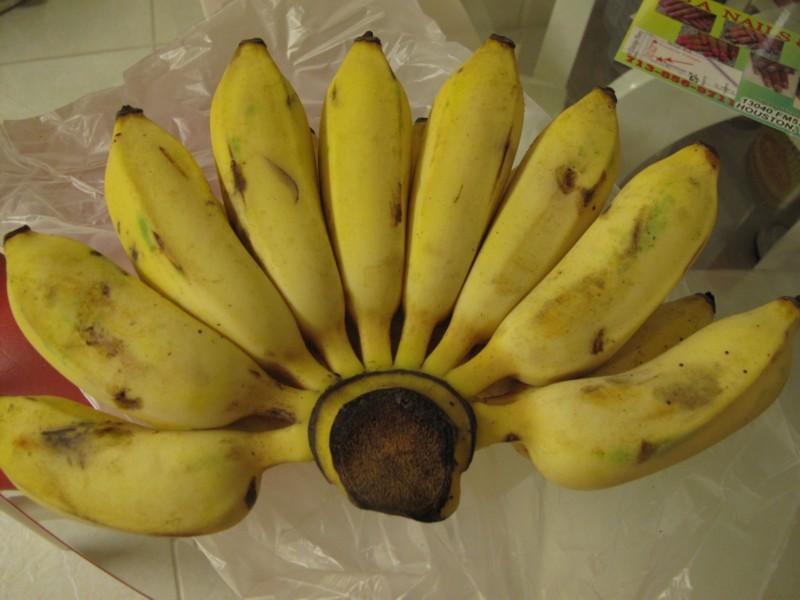 cách nấu chè chuối côt dừa 1